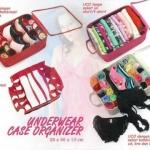 underwear case organizer Murah (250 g, 28x36x13 cm)